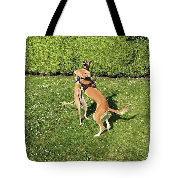 Ava The Saluki And Finly The Lurcher Tote Bag