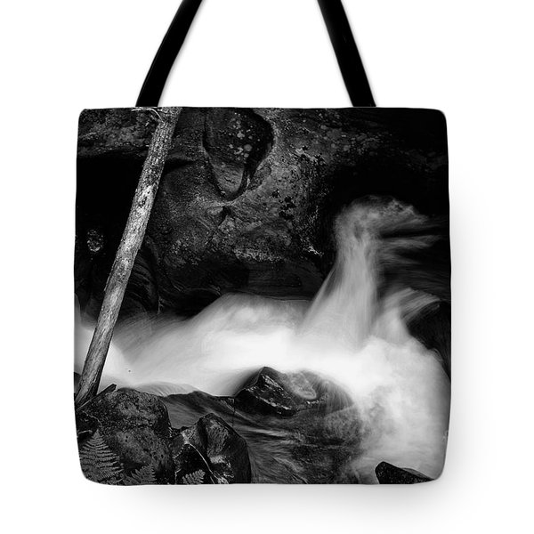 Tote Bag featuring the photograph Avalanche Creek Bw by Vinnie Oakes