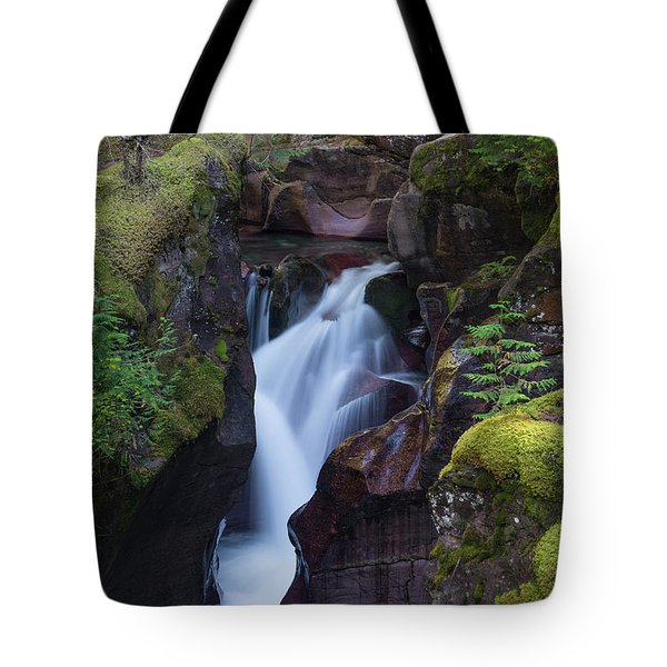 Avalanche Gorge 3 Tote Bag by Gary Lengyel