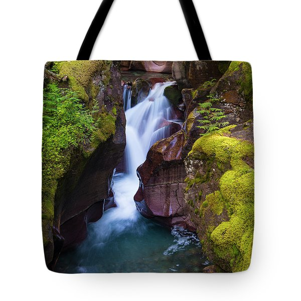 Tote Bag featuring the photograph Avalanche Gorge 4 by Gary Lengyel