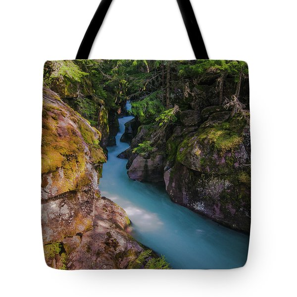 Tote Bag featuring the photograph Avalanche Gorge 5 by Gary Lengyel