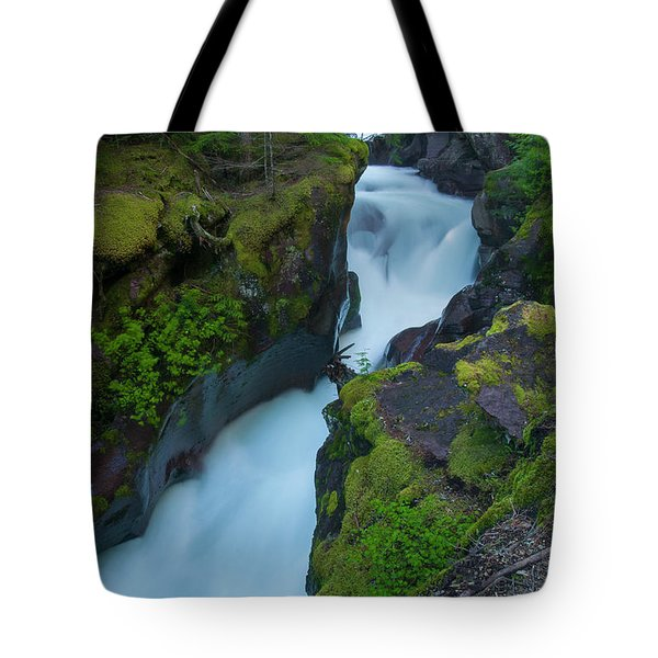 Tote Bag featuring the photograph Avalanche Gorge 6 by Gary Lengyel