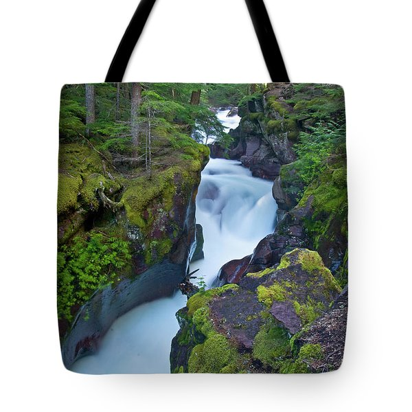Tote Bag featuring the photograph Avalanche Gorge 7 by Gary Lengyel