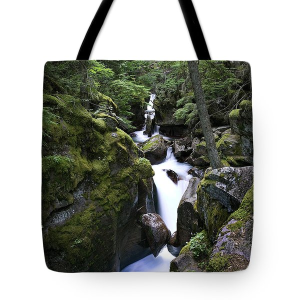 Avalanche Gorge Glacier National Park Tote Bag