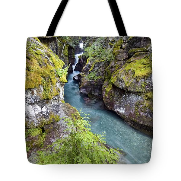 Avalanche Gorge In Glacier National Park Tote Bag