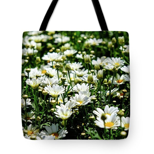 Tote Bag featuring the photograph Avalanche Sun Daises by Monte Stevens