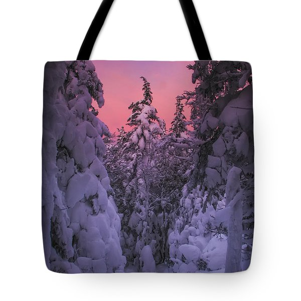 Avalon Sunset Tote Bag