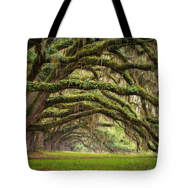 Avenue Of Oaks - Charleston Sc Plantation Live Oak Trees Forest Landscape Tote Bag