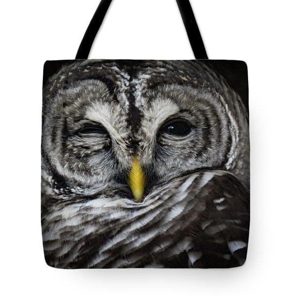 Avery's Owls, No. 11 Tote Bag