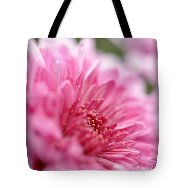 Awakening Tote Bag by Glenn Gordon