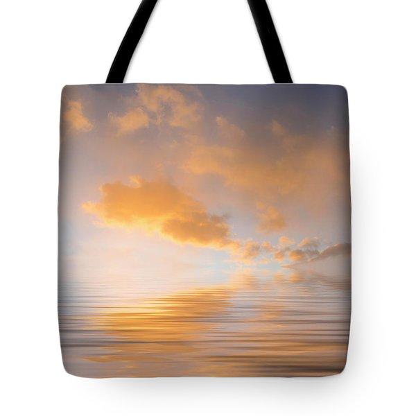 Awakening Tote Bag by Jerry McElroy