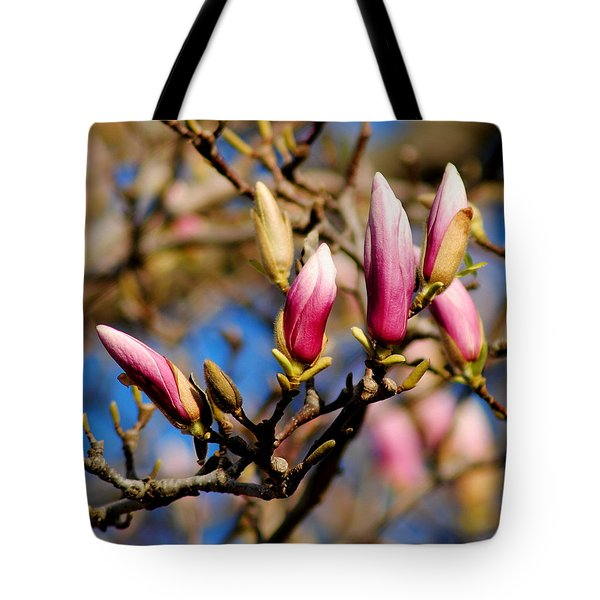 Awaking From Hibernation Tote Bag by Frozen in Time Fine Art Photography