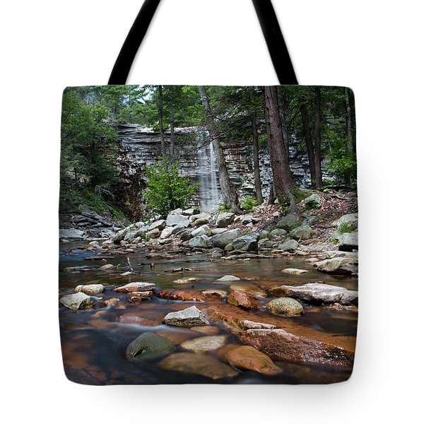 Awosting Falls In July Iv Tote Bag by Jeff Severson