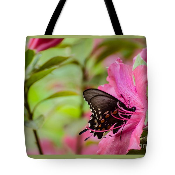 Azalea And Butterfly Tote Bag by Donna Brown
