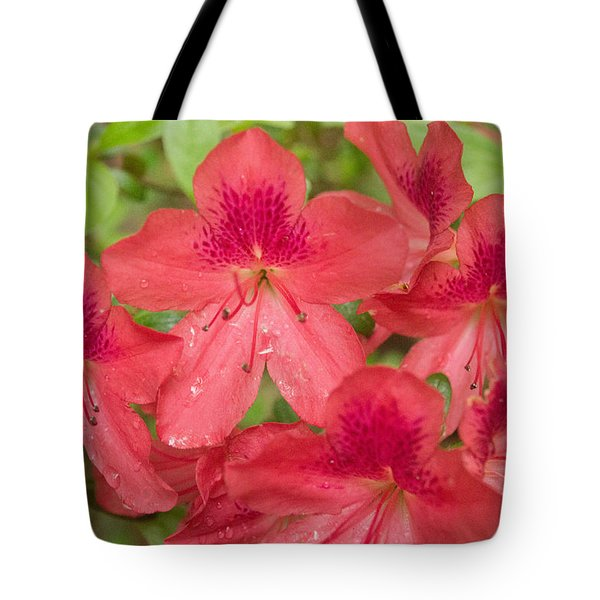 Azalea Blossoms Tote Bag