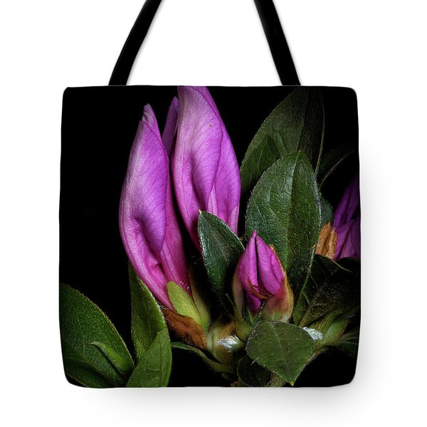 Tote Bag featuring the photograph Azalea Buds by Richard Rizzo