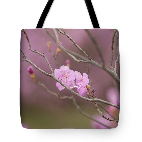 azalea III Tote Bag by Hyuntae Kim