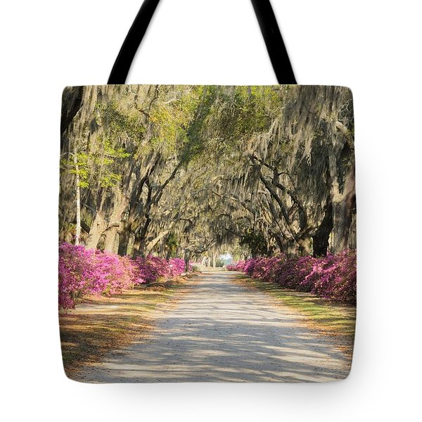azalea lined road in Spring Tote Bag