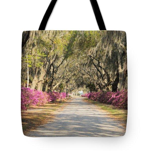 azalea lined road in Spring Tote Bag