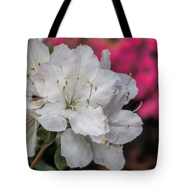 Tote Bag featuring the photograph Azaleas In Turtle Creek by Diana Mary Sharpton