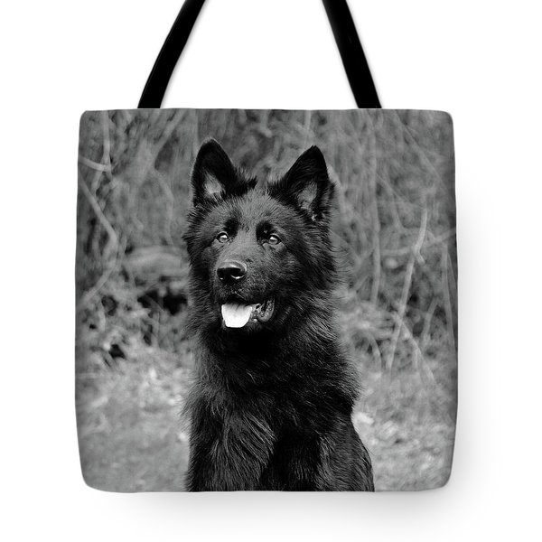 Tote Bag featuring the photograph Aziza  by Sandy Keeton