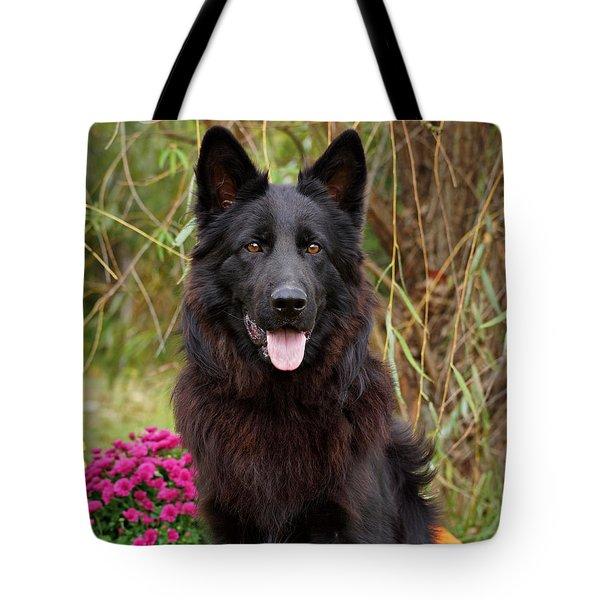 Aziza Tote Bag