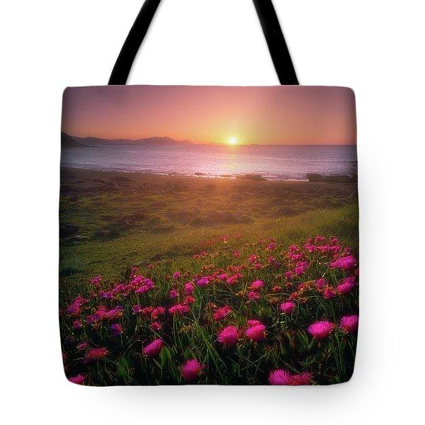 Azkorri In Springtime Tote Bag