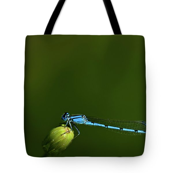 Azure Damselfly-coenagrion Puella Tote Bag