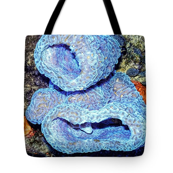 Azure Vase Sponge Impossible Blue Tote Bag