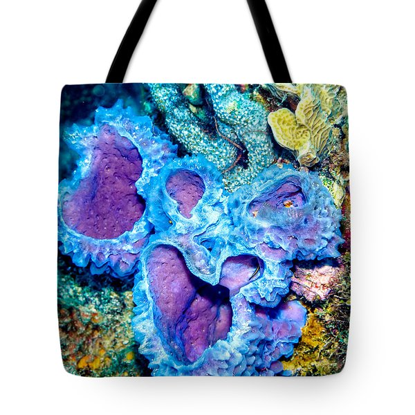Tote Bag featuring the photograph Azure Vase Sponges by Perla Copernik
