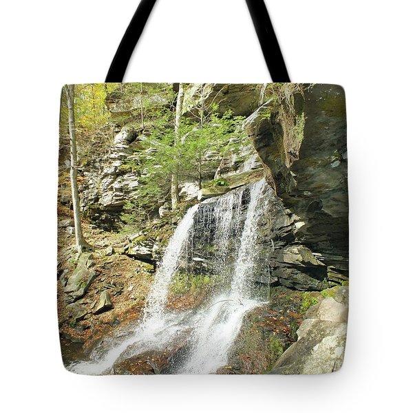 B. Reynolds 8 - Ricketts Glen Tote Bag