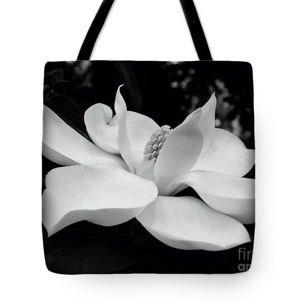 B W Magnolia Blossom Tote Bag