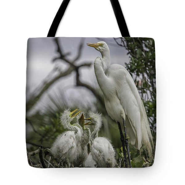 Babies In The Nest Tote Bag