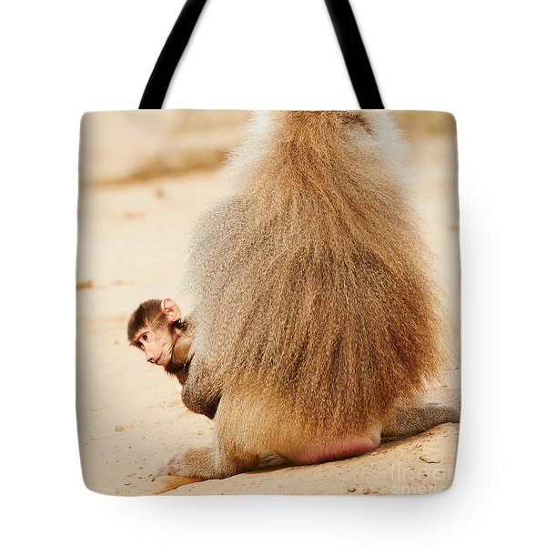 Baboon With A Baby  Tote Bag
