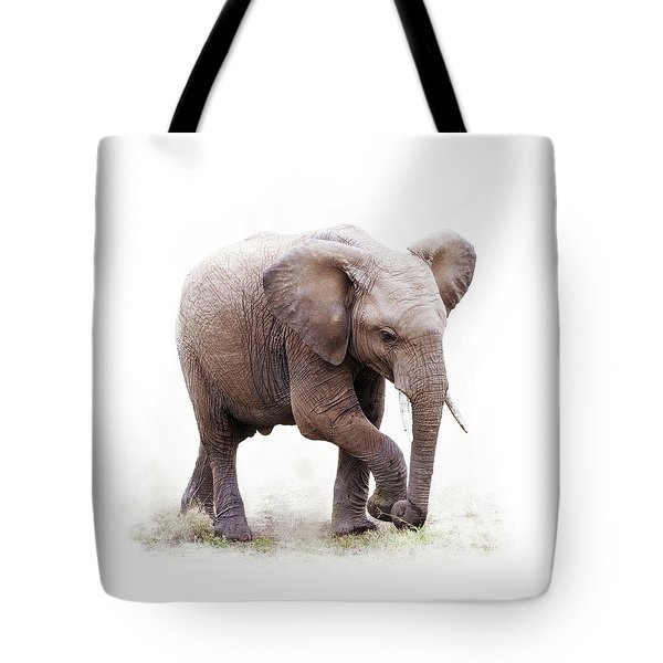 Baby African Elephant Isolated On White Tote Bag