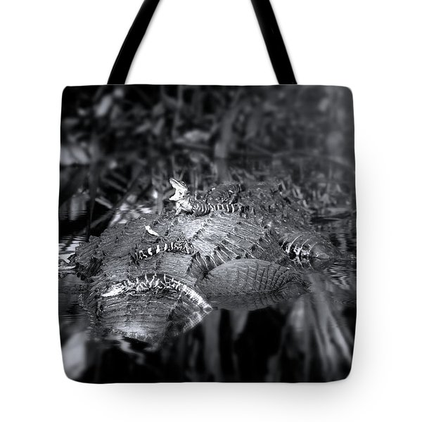 Baby Alligators On Board Tote Bag by Mark Andrew Thomas