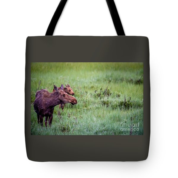 Baby And Me Tote Bag by Sandy Molinaro