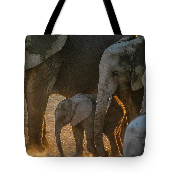 Baby And Siblings Tote Bag