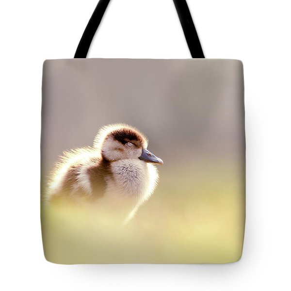 Baby Animals Series - Zen Gosling Tote Bag