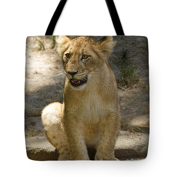 Baby Baby Tote Bag