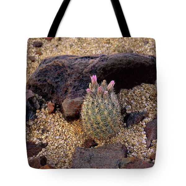 Baby Barrel Cactus Tote Bag