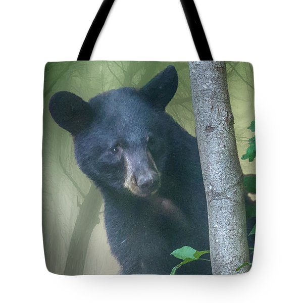 Baby Bear Takes A Peek Tote Bag
