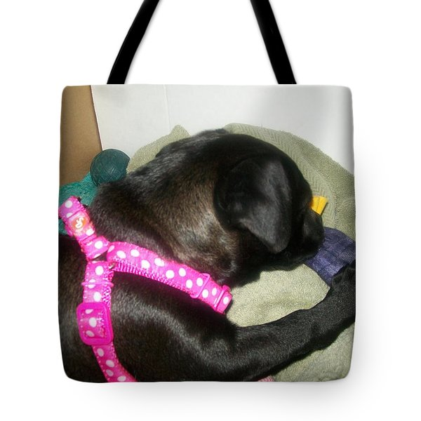Tote Bag featuring the photograph Baby Bella by Jewel Hengen