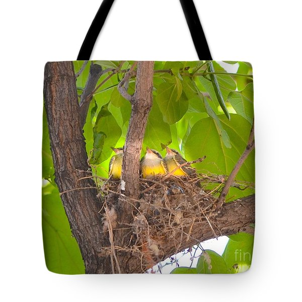 Baby Birds Waiting For Mom Tote Bag