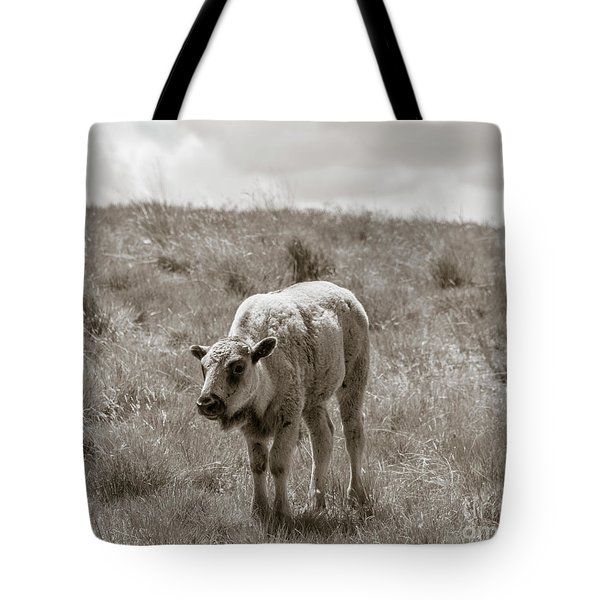 Tote Bag featuring the photograph Baby Buffalo In Field With Sky by Rebecca Margraf