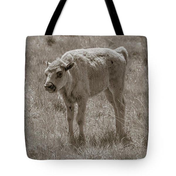 Tote Bag featuring the photograph Baby Buffalo by Rebecca Margraf