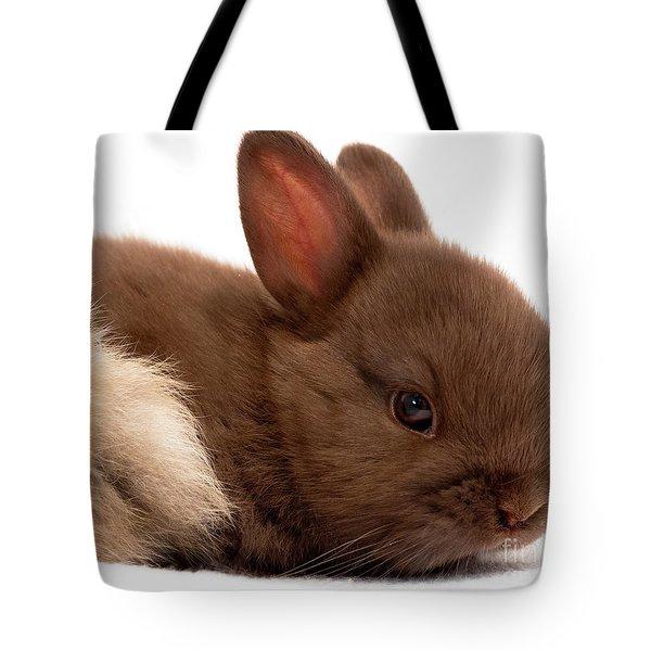 Baby Bunny  #03074 Tote Bag