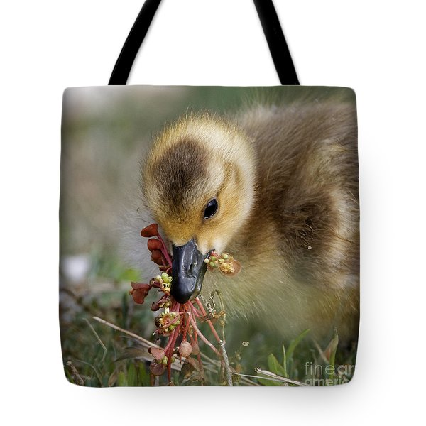 Baby Chick With Water Flowers Tote Bag