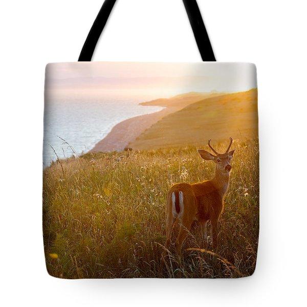 Baby Deer Tote Bag by Evgeny Vasenev
