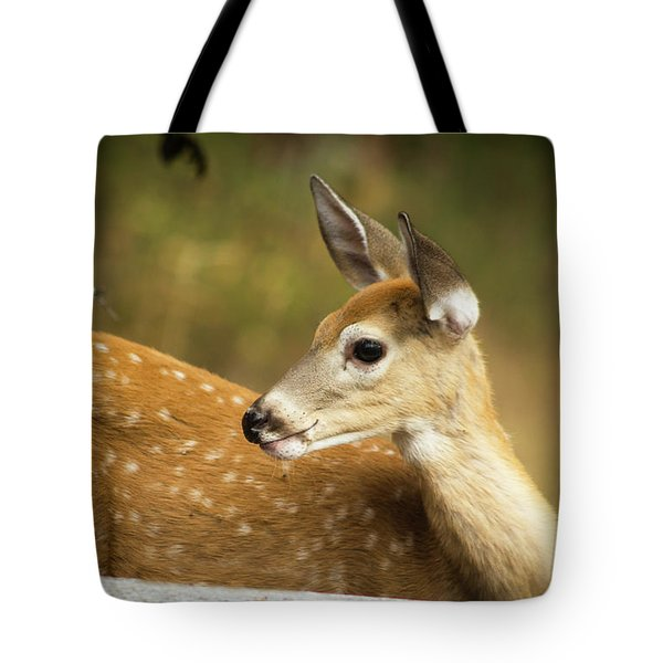 Tote Bag featuring the photograph Baby Deer by Tyra OBryant